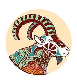 ดูดวงปี 2560 ราศีมังกร Capricorn (14 ม.ค. – 12 ก.พ.)